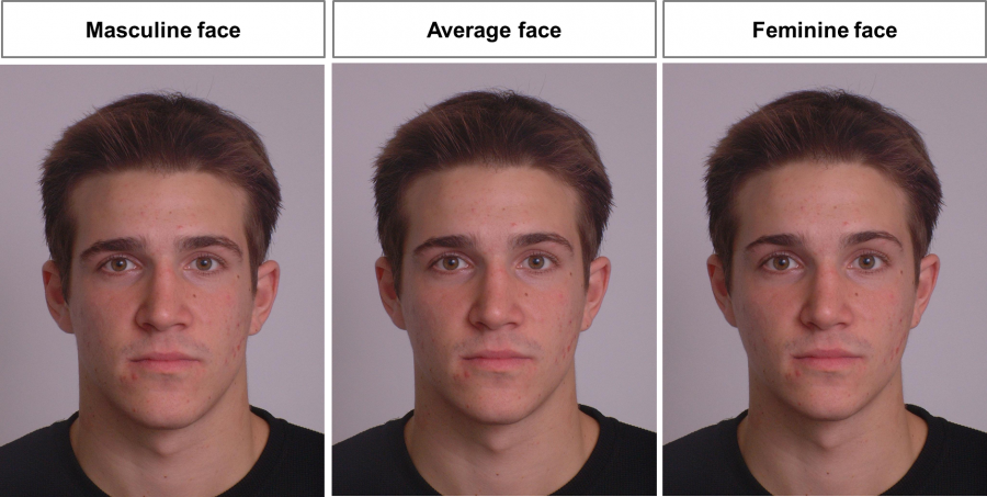 [Image: FaceResearch-attractiveness-male-face-900x453.png]